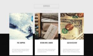 wordpress website voorbeelden foto