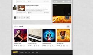 een foto van responsive webshop en muzieksite