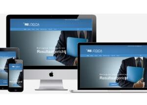 Professionele website laten maken de ReLogica