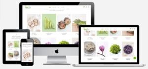biologische-webwinkel laten-maken
