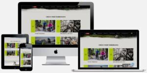 professionele fiets webshop laten-maken