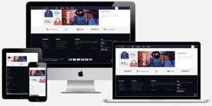 professionele webshop laten maken met ideal