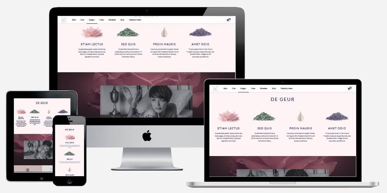 Laat een professionele webshop maken tegen een aantrekkelijke prijs